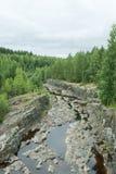 干燥河床 库存图片