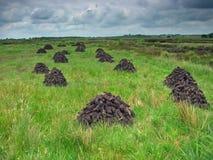 干燥泥煤 免版税库存图片