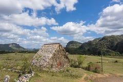 干燥烟草的小屋在Vinales,古巴离开 免版税库存照片
