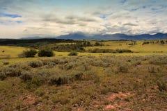 干燥牧场地 库存图片