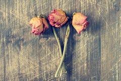 干燥玫瑰三 库存图片