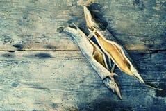干燥盐味的河鱼 免版税库存照片