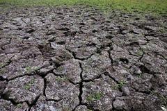 干燥破裂的土壤顶视图与草的 免版税库存照片
