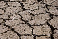干燥破裂的河床 免版税图库摄影