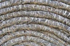 干燥秸杆和干草美好的背景 免版税库存照片