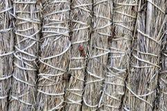 干燥秸杆和干草美好的背景 免版税库存图片