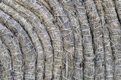干燥秸杆和干草美好的背景 库存照片