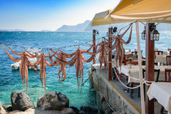 干燥章鱼在圣托里尼海岛,在格栅准备的传统希腊海鲜上的希腊小酒馆武装 免版税库存图片