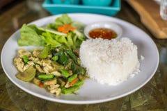 干燥绿色咖喱鸡混乱由没有汤油煎了用在白色盘的茉莉花米膳食的 免版税库存照片