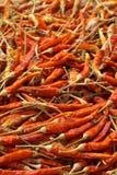 干燥胡椒红色 免版税图库摄影