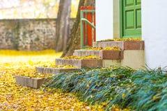 干燥色的叶子在秋天落对砖楼梯 图库摄影