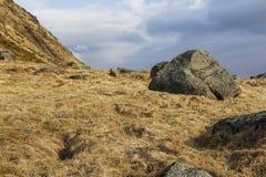 干燥草原在冬天 免版税库存图片