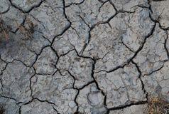 干燥陆运 库存图片