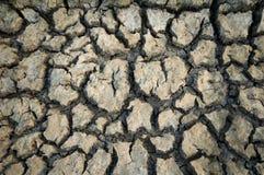 干燥陆运 免版税图库摄影