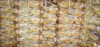 干燥鱼背景 图库摄影