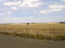 干燥,澳大利亚人洗刷和农田 图库摄影