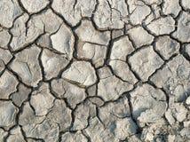 干燥,破裂的地球照片  免版税库存图片