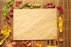 干燥黄色叶子和老纸 图库摄影