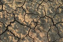 干燥破裂的土壤特写镜头 免版税库存照片