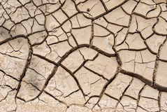 干燥破裂的地球 免版税库存图片