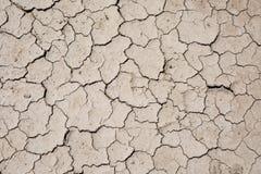干燥破裂的地面 免版税图库摄影