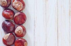 干燥chesnuts 图库摄影