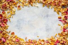 干狂放的玫瑰花瓣框架  免版税库存照片
