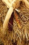 干玉米、玉米壳和干草秋天装饰 库存图片