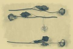 干玫瑰和发光的心脏 库存照片
