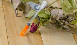 干玫瑰色和注射器 库存照片