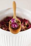 干玫瑰花瓣:对茶,替代医学,杂烩 免版税库存照片