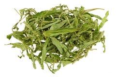 干甜叶菊叶子& x28; 甜叶子,糖leaf& x29;糖精和sug 库存图片
