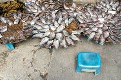 干盐味的年轻女人鱼 免版税库存照片