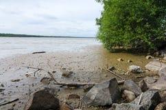 干盐湖在南瑞典 库存图片