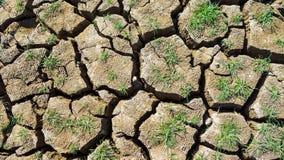 干盐湖泥在Pai,泰国 库存图片