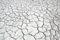 干盐湖泥 免版税库存图片