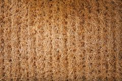 干秸杆植物为墙壁,屋顶,小屋包装 抽象背景构造了 免版税库存照片