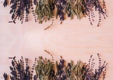 干绿色和紫色蓬蒿 免版税库存照片