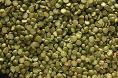 干绿豆 免版税库存图片