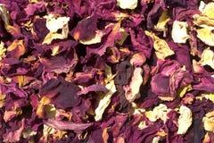 干花在与强烈的芳香的东方市场上 库存图片