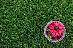 干花顶视图在玻璃的在绿草背景 免版税库存图片