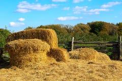 干草农场 库存图片