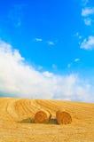 干草卷、蓝天和黄色域在夏天。 免版税图库摄影