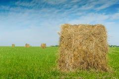 干草卷在一个绿色领域的反对美好的天空背景 免版税库存照片