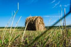 干草卷在领域的 免版税库存照片