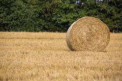 干草卷在麦子收割期 库存图片