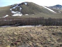 干草原和小山在俄罗斯和哈萨克斯坦边界  图库摄影