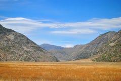 干草原和山在阿尔泰山 免版税库存图片