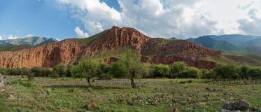 干草原哈萨克斯坦,跨Ili Alatau,高原机组 免版税库存图片