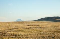 干草原在夏天 中亚哈萨克斯坦 免版税库存图片